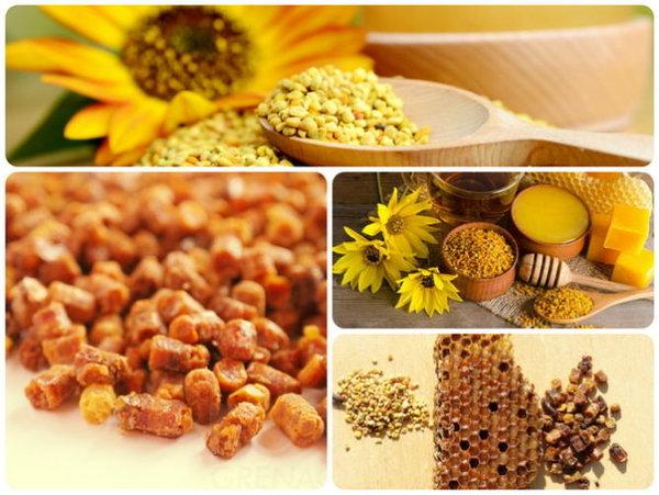 Что такое пчелиная перга? её польза и применение