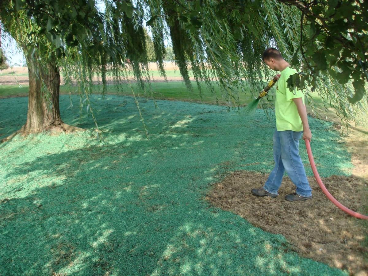 Жидкий газон или гидропосев