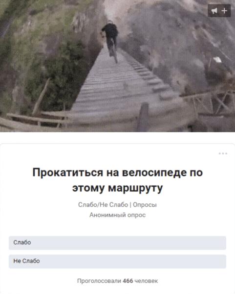 Вам нужна накрутка опросов «вконтакте» бесплатно? мы лучшие в этом!