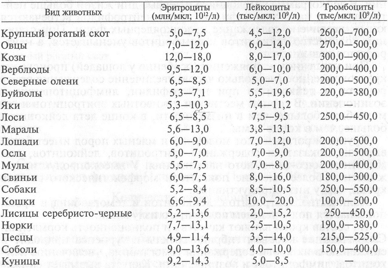 Анализ крови на тромбоциты. особенности проведения и о чем говорит повышение или понижение уровня тромбоцитов
