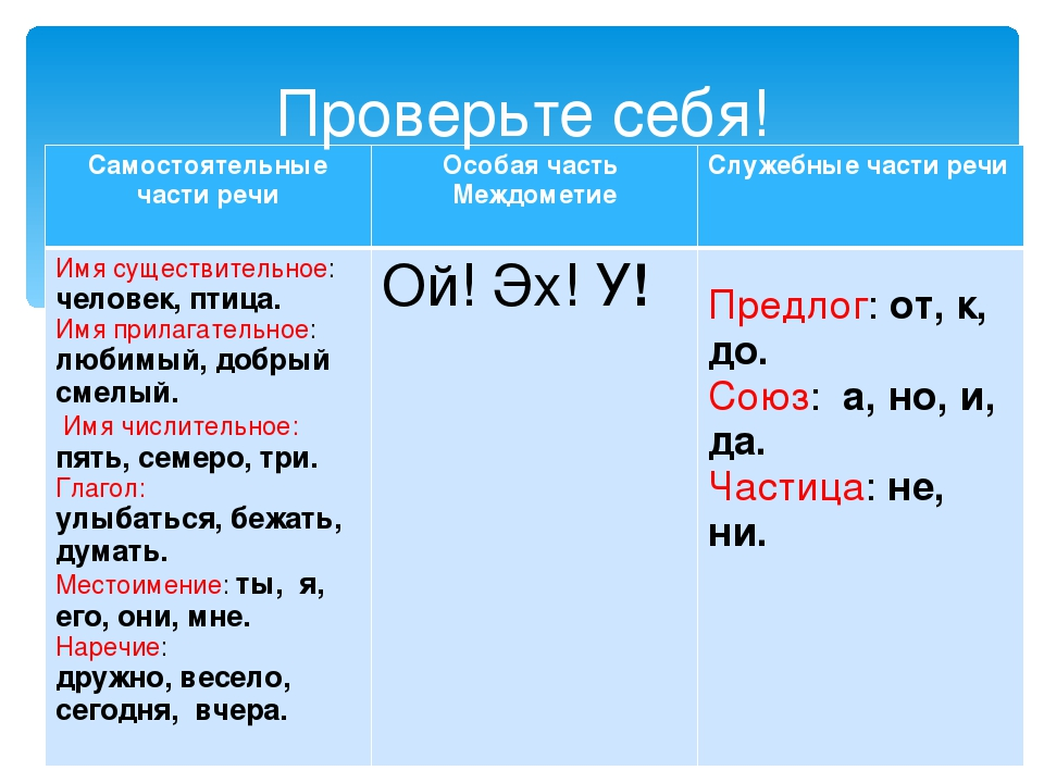 Служебные части речи: предлоги, союзы, частицы ???? спадило.ру