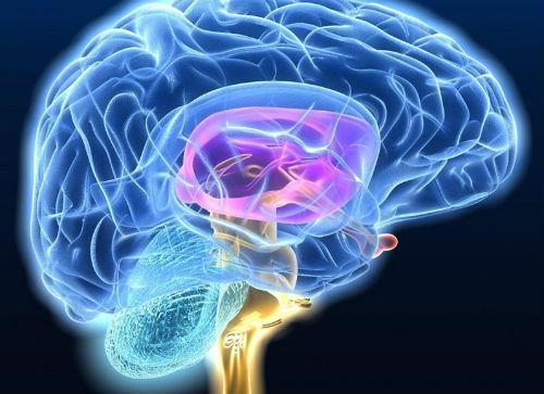 Кт диагностика головного мозга что это, анатомия; эмиссионная