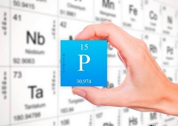 В каких продуктах содержится фосфор, список, роль в организме