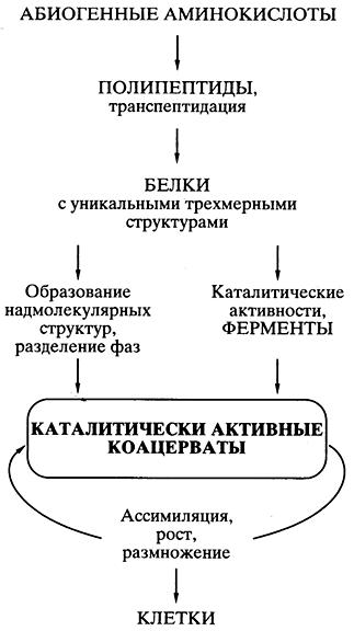 Коацерват - coacervate