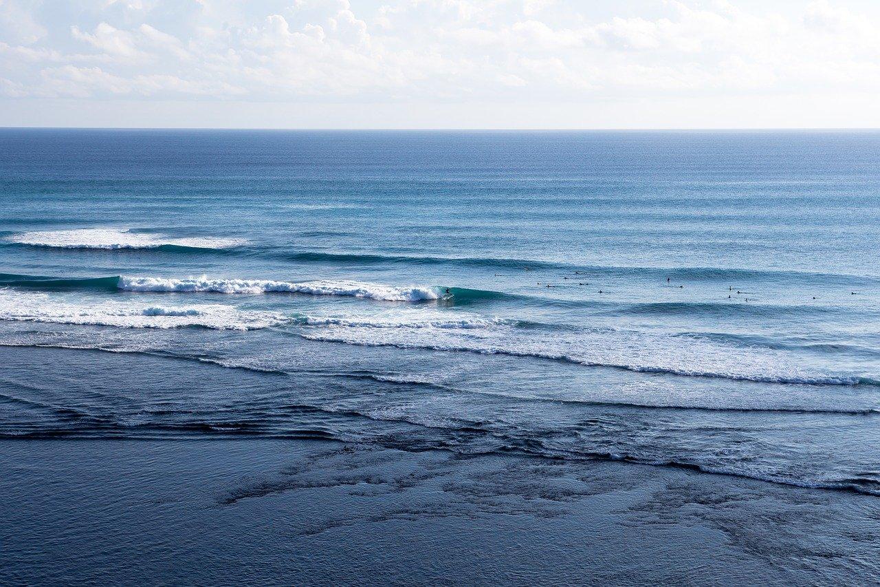 Сколько и какие океаны есть на земле: карта, названия, описание, подводный мир, фото и видео