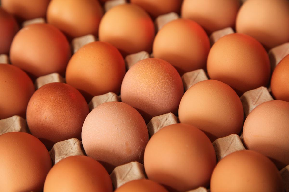 Яйцо (пищевой продукт) — википедия с видео // wiki 2