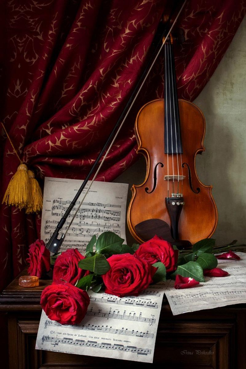 Жанры классической музыки: история и современность, описание и интересные факты