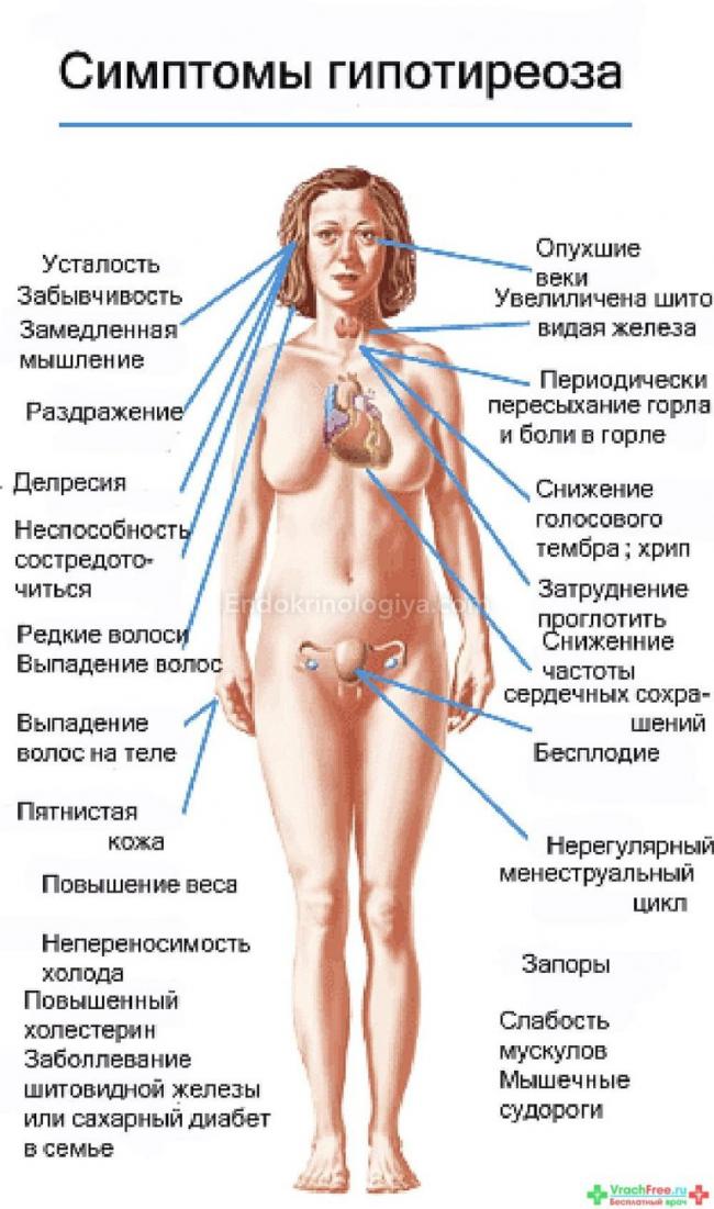 Гипертиреоз: причины, симптомы и лечение | университетская клиника