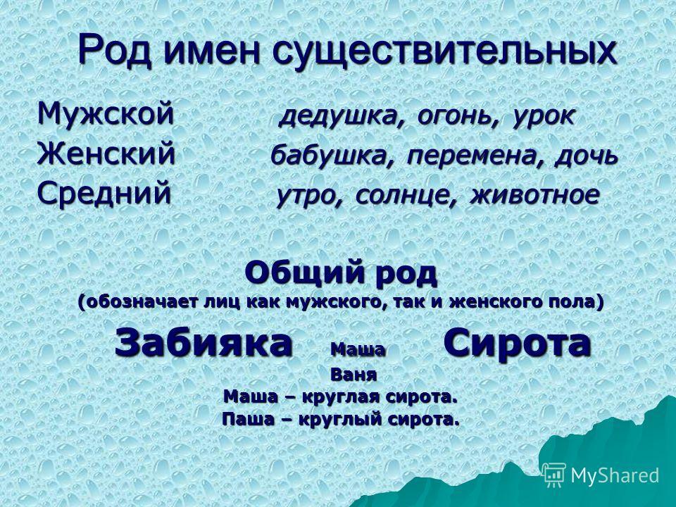 Род имён существительных в русском языке