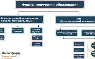Очно заочная форма обучения студентов - это как: плюсы и минусы, какие бывают еще способы учебы, чем отличаются   tvercult.ru