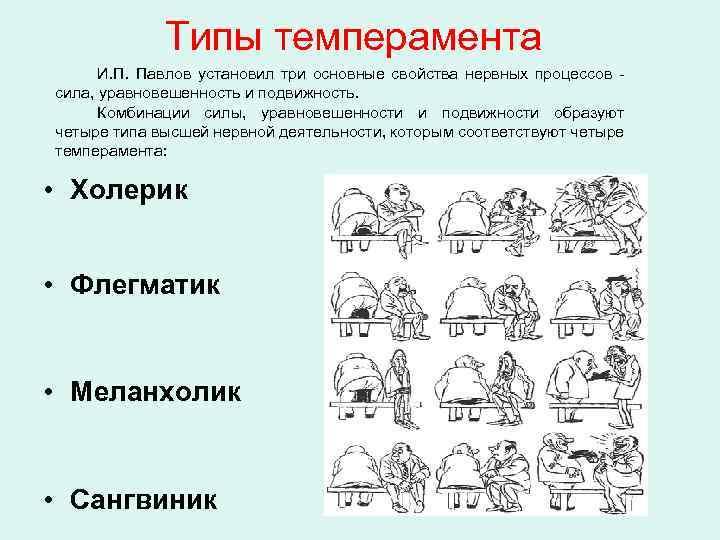 Четыре типа темперамента: классификация и описание личностей по гиппократу