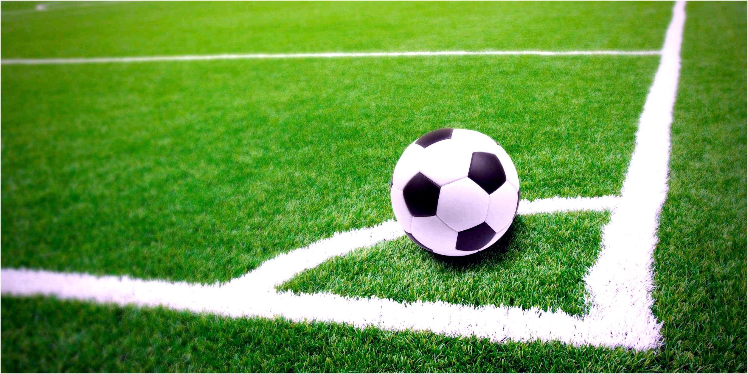 Ставки на спортивные события: как работают тотализаторы