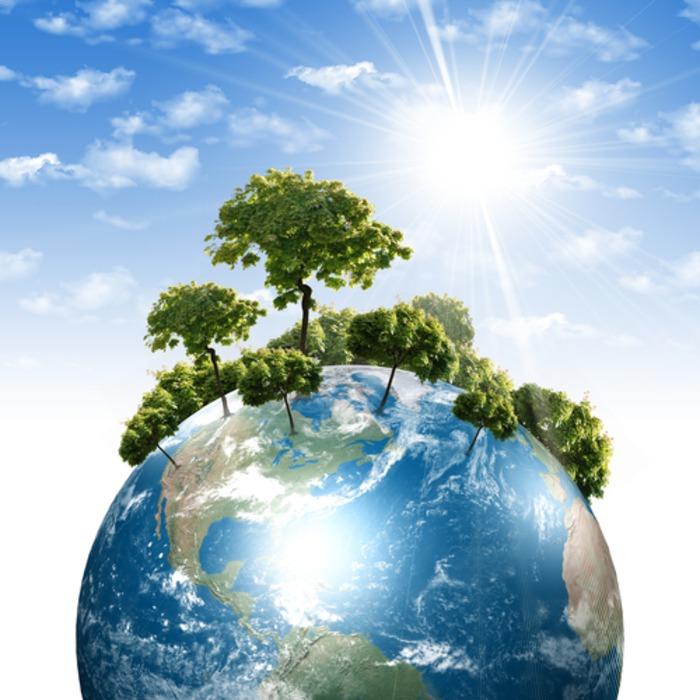 Что такое экология?