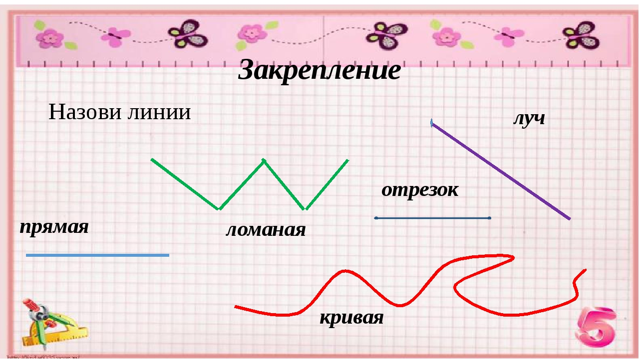 Точка, линия, прямая, луч, отрезок, ломанная   математика (геометрия)