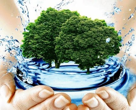 Природопользование – это... природопользование и охрана окружающей среды :: businessman.ru
