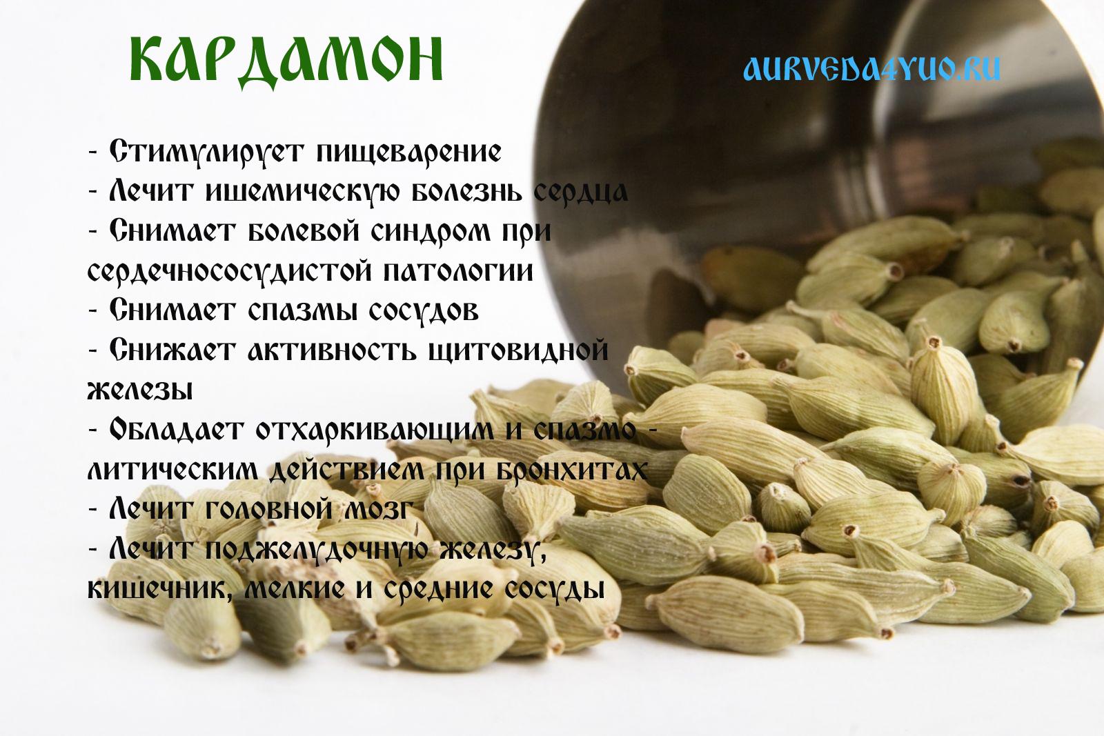 Кофе с кардамоном, полезные свойства, рецепты приготовления: в турке, с корицей.