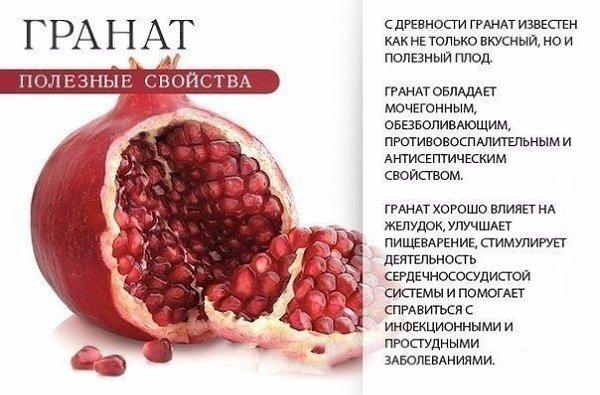 Определение фрукты.  что означает слово фрукты?