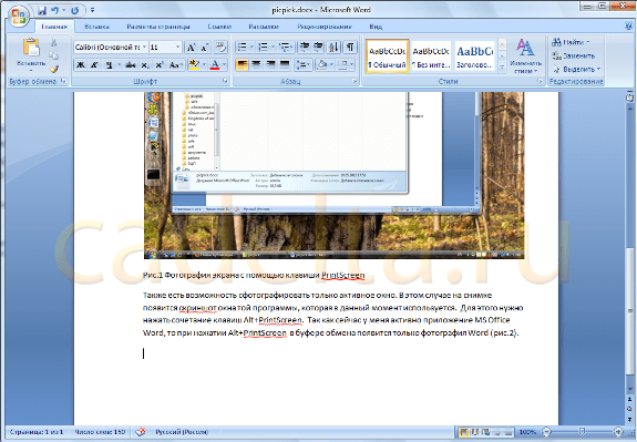 Что такое расширение файла snapshot?