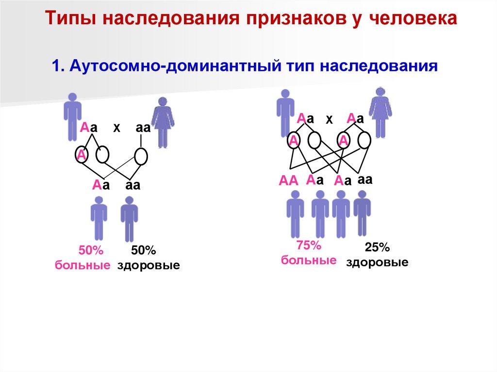 Наследование (биология) — википедия с видео // wiki 2