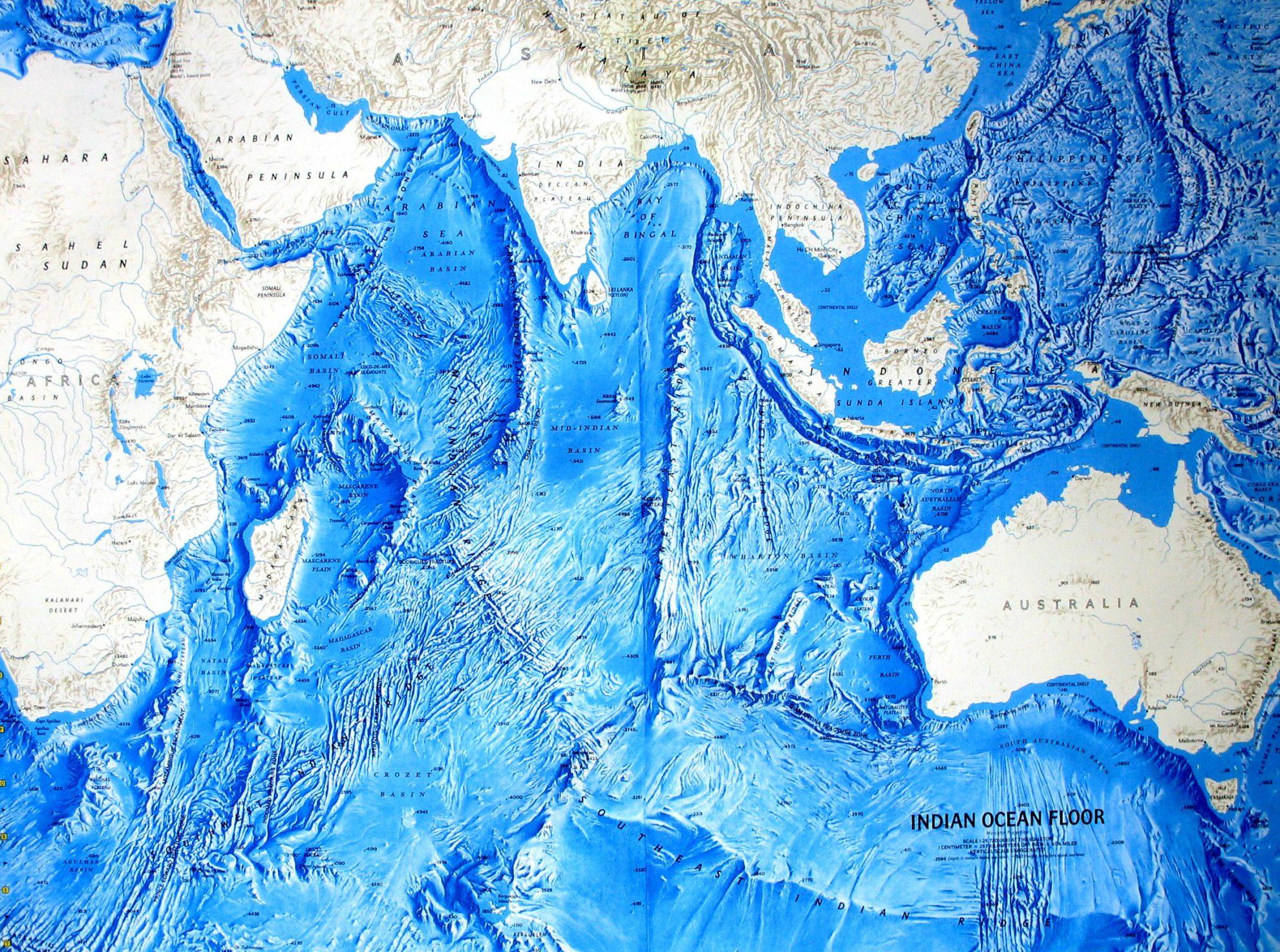 Чем отличается море от океана: площадь, соленость, качество дна, флора и фауна, система течений
