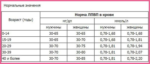 Лпвп (липопротеиды высокой плотности) повышены: что это значит у женщин и мужчин