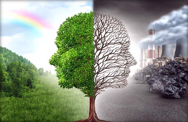 Экологическое право – принципы системы, предмет и объекты