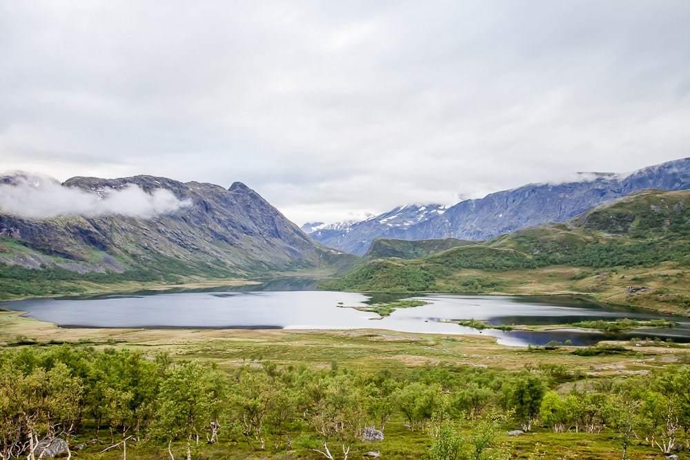 Барневарн в норвегии – это государственный фашизм в чистом виде и геноцид белого населения – новости руан