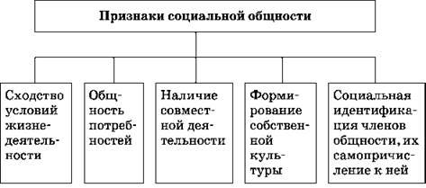 Социальные отношения и социальная структура