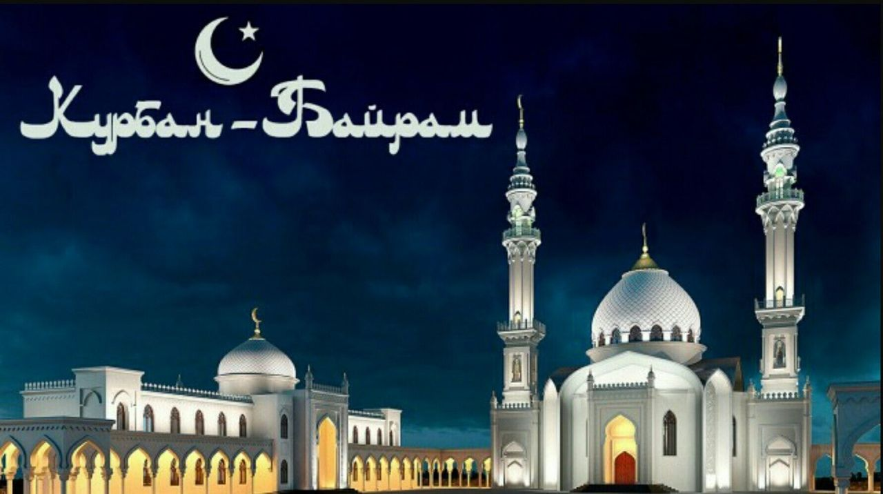 Курбан-байрам 2020: даты, история и традиции, правила хаджа, как приносят в жертву баранов   новости