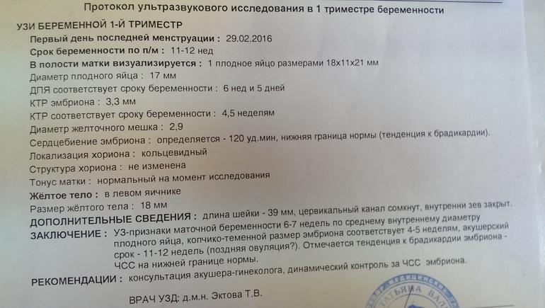 Кто такой лор врач? | materlife.ru