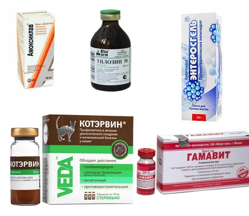 Какие препараты нельзя пить при коронавирусе