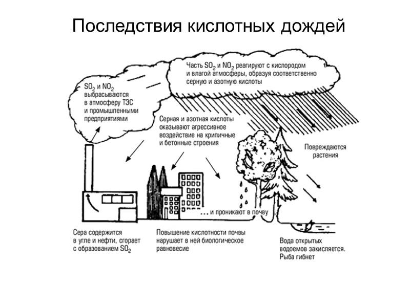 Кислотные дожди - это... кислотные дожди: причины. проблема кислотных дождей