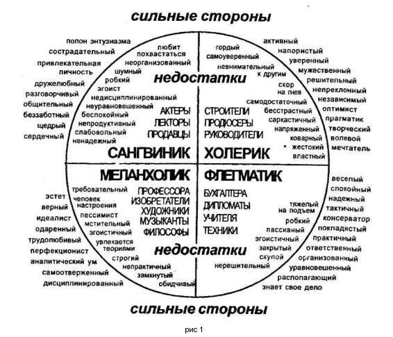 Темперамент холерика: описание, определение в психологии, краткая характеристика
