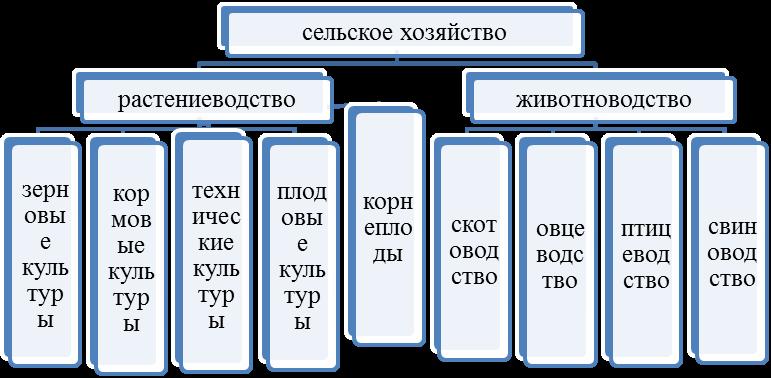 Растениеводство в россии: место отрасли и основные направления в сельском хозяйстве — cельхозпортал