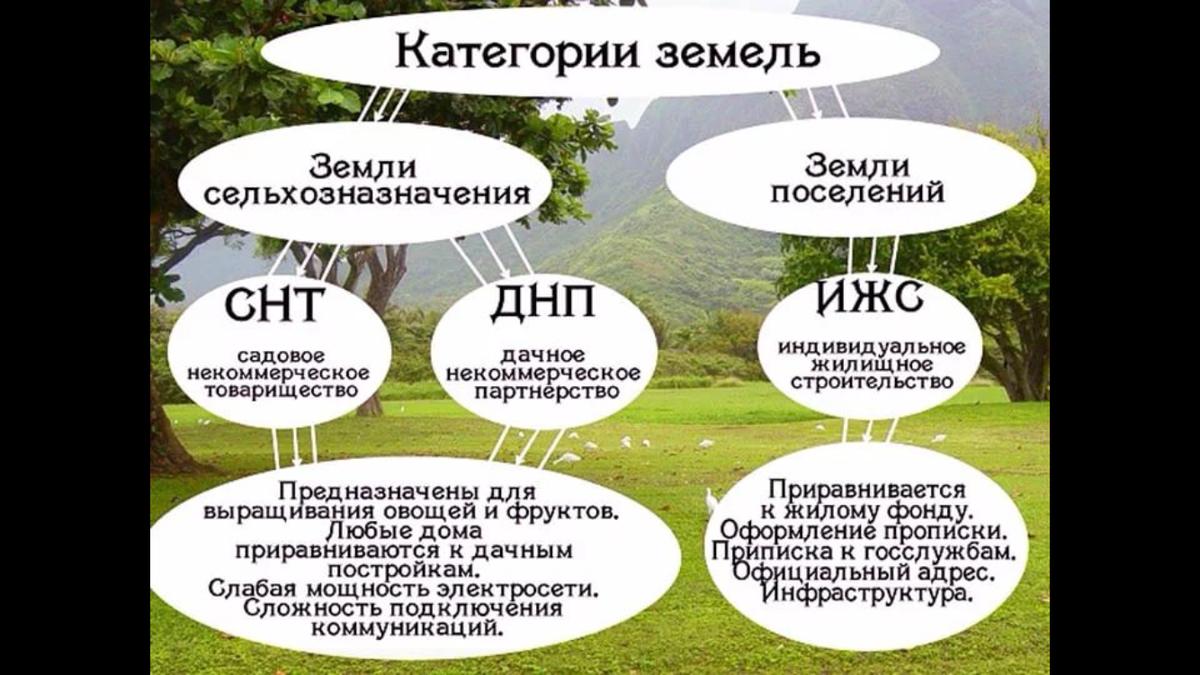 Личное подсобное хозяйство - закон, участок, владелец - описание с видео | россельхоз.рф