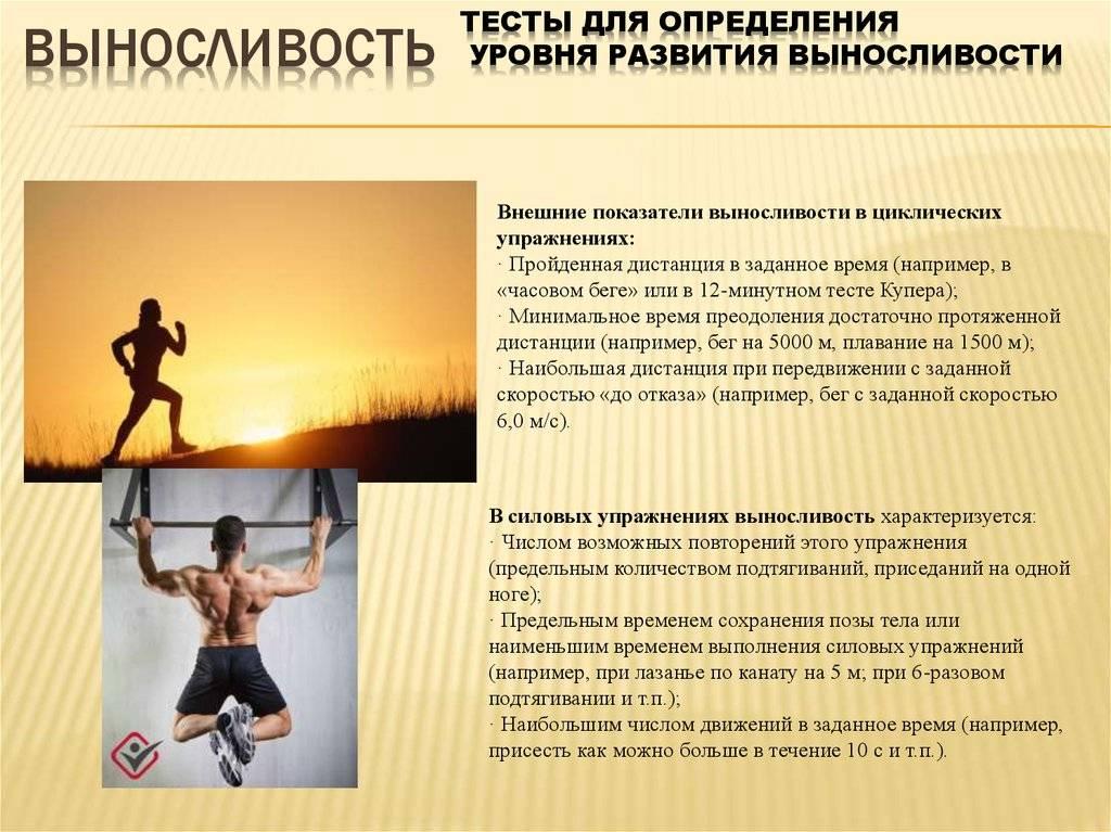 Как повысить выносливость организма: упражнения для увеличения физической выносливости мышц и силы