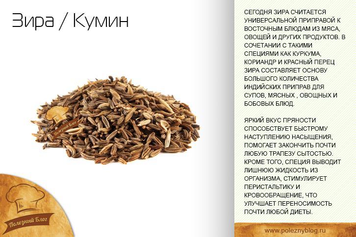Зира — описание, свойства специи, секреты использования в кулинарии на ydoo.info