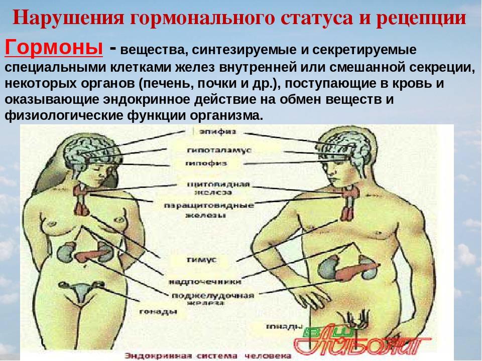 Гормональный сбой у мужчин — симптомы