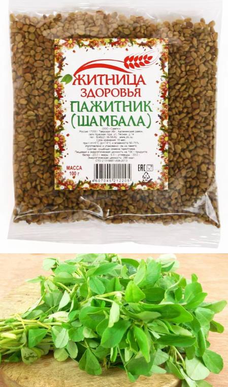 Шамбала ( пажитник, фенугрек, хельба) — полезные свойства, описание, применение плодов и листьев