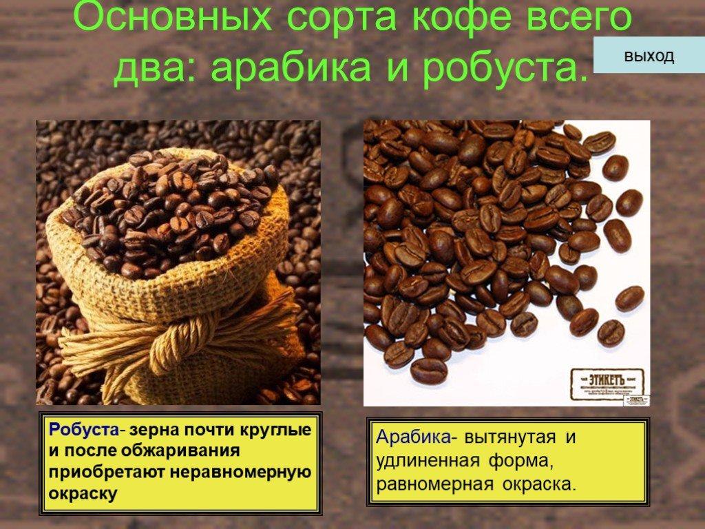 Различия арабики и робусты | какой кофе лучше и в чем разница | журнал про кофе bravos | яндекс дзен