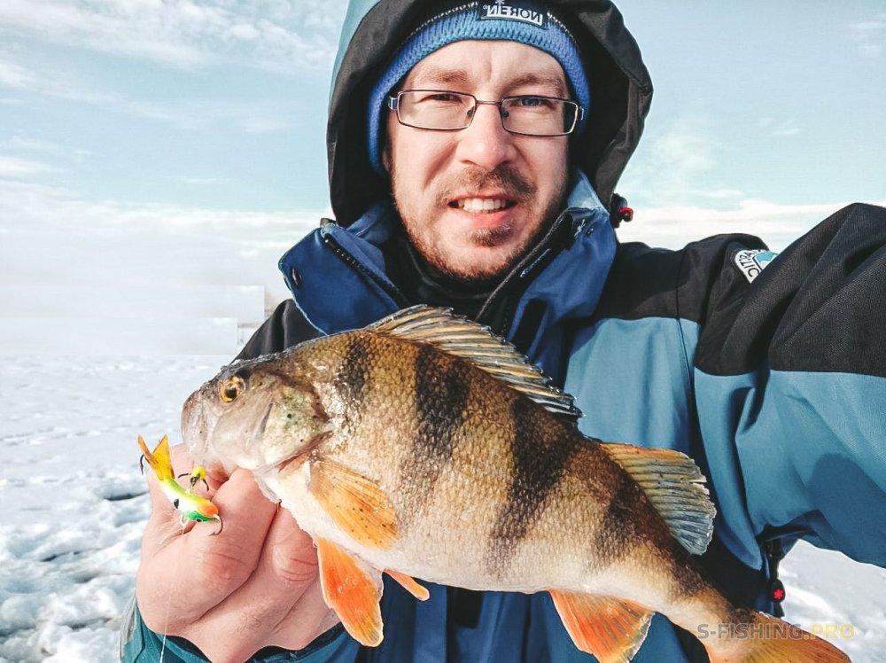 Что такое эхолот и как его используют для рыбалки?