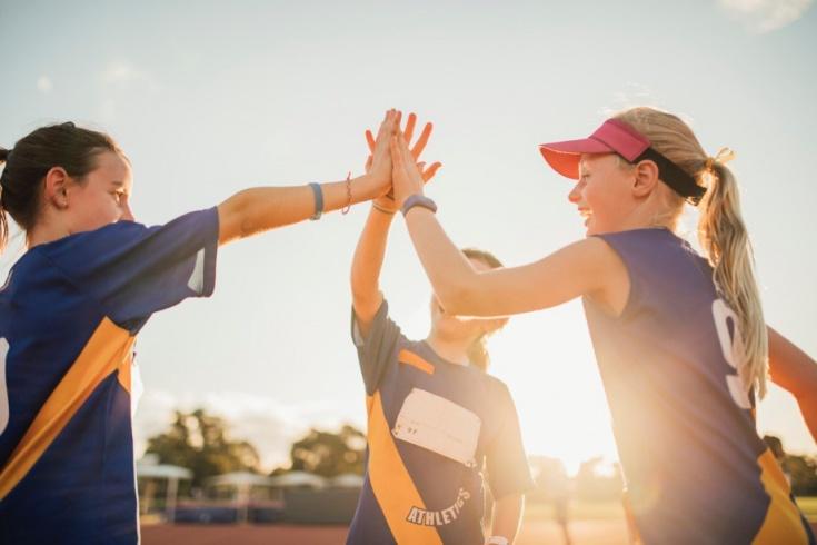 Профессиональный спорт — википедия