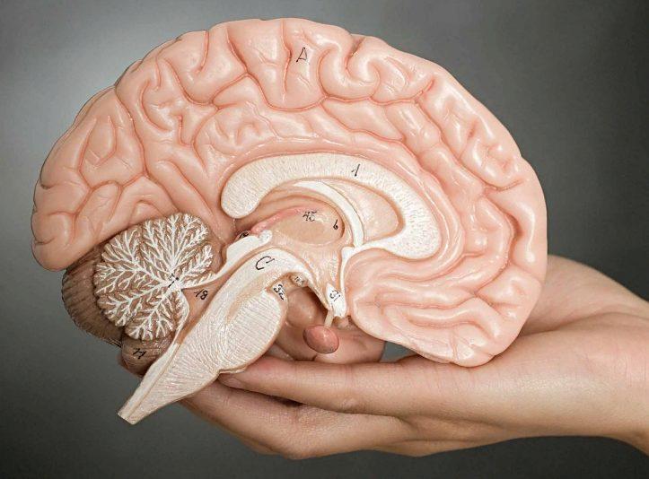 Аденома гипофиза: симптомы у женщин и мужчин, прогноз и лечение в москве