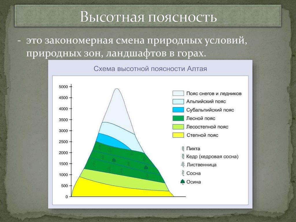 Что такое широтная зональность и высотная поясность, география