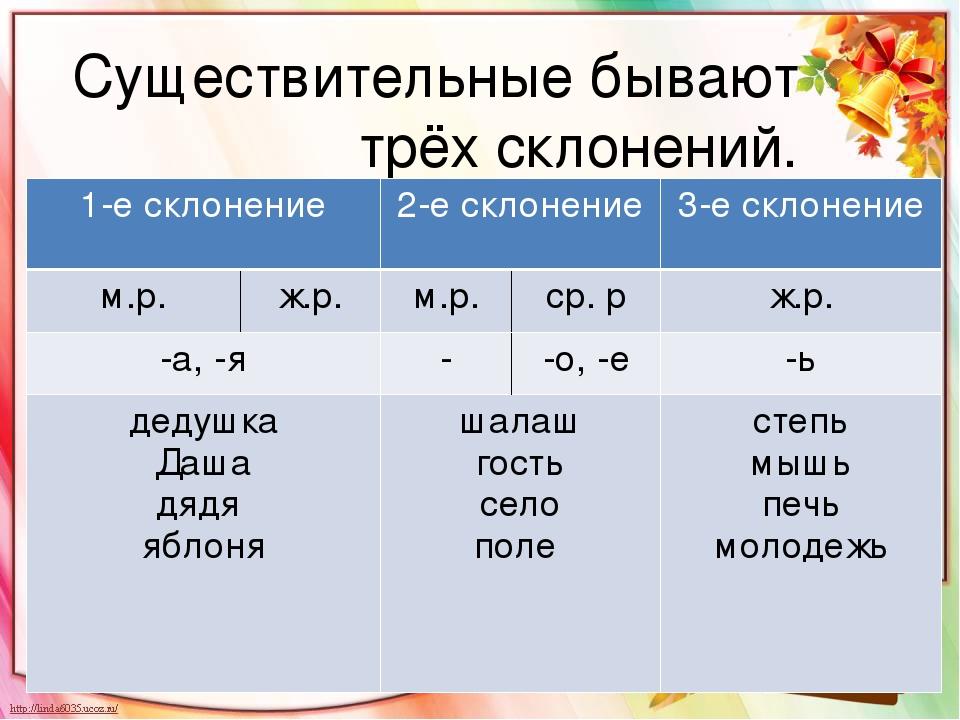Существительные первого склонения (примеры)
