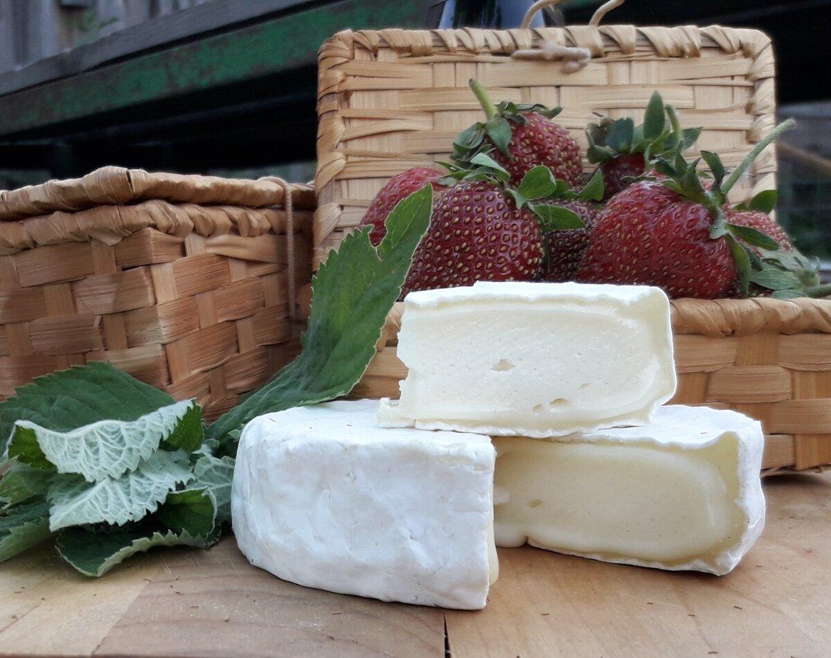 Все о камамбер: что это, история происхождения сыра, его вкус и вид, состав и особенности употребления