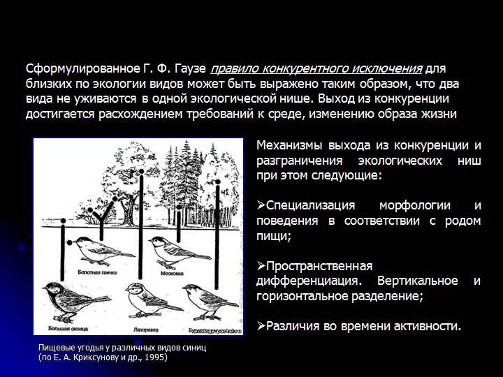 Местообитание и экологическая ниша