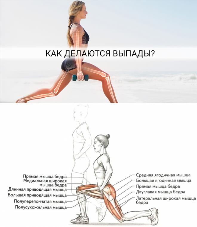 Выпады с гантелями в руках: техника выполнения упражнения