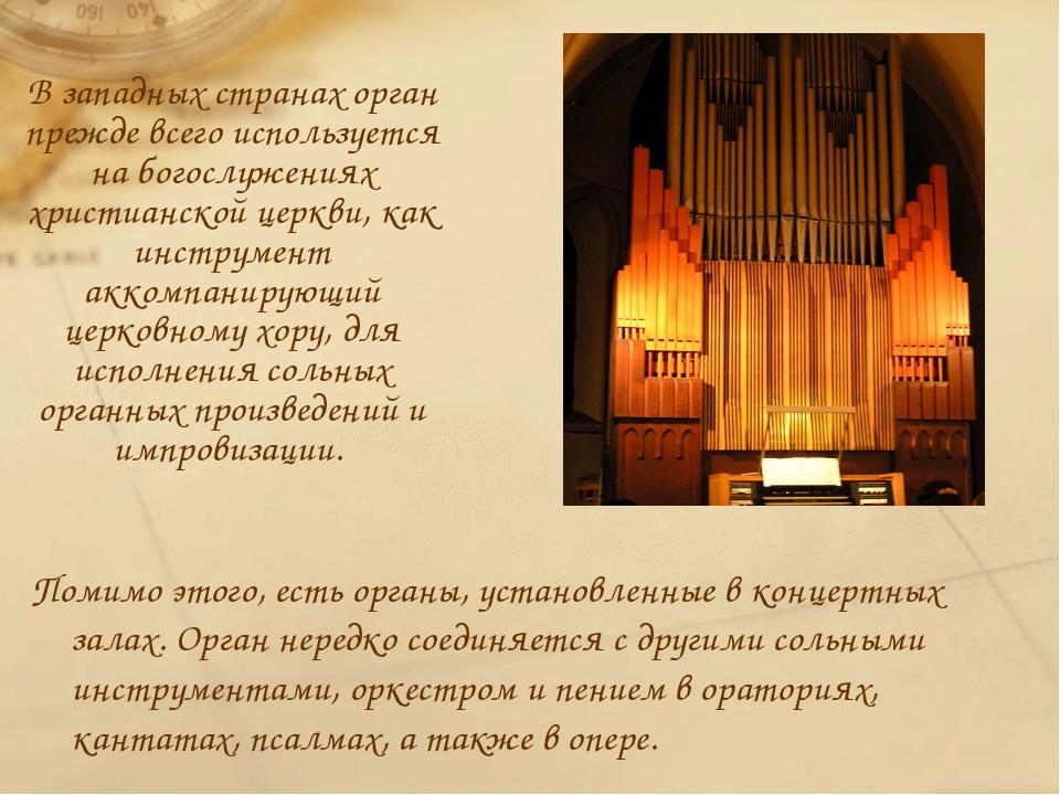 История возникновения и развития органа