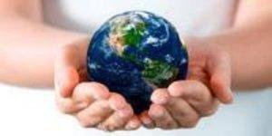 Окружающая среда: что это такое, ее виды и значение